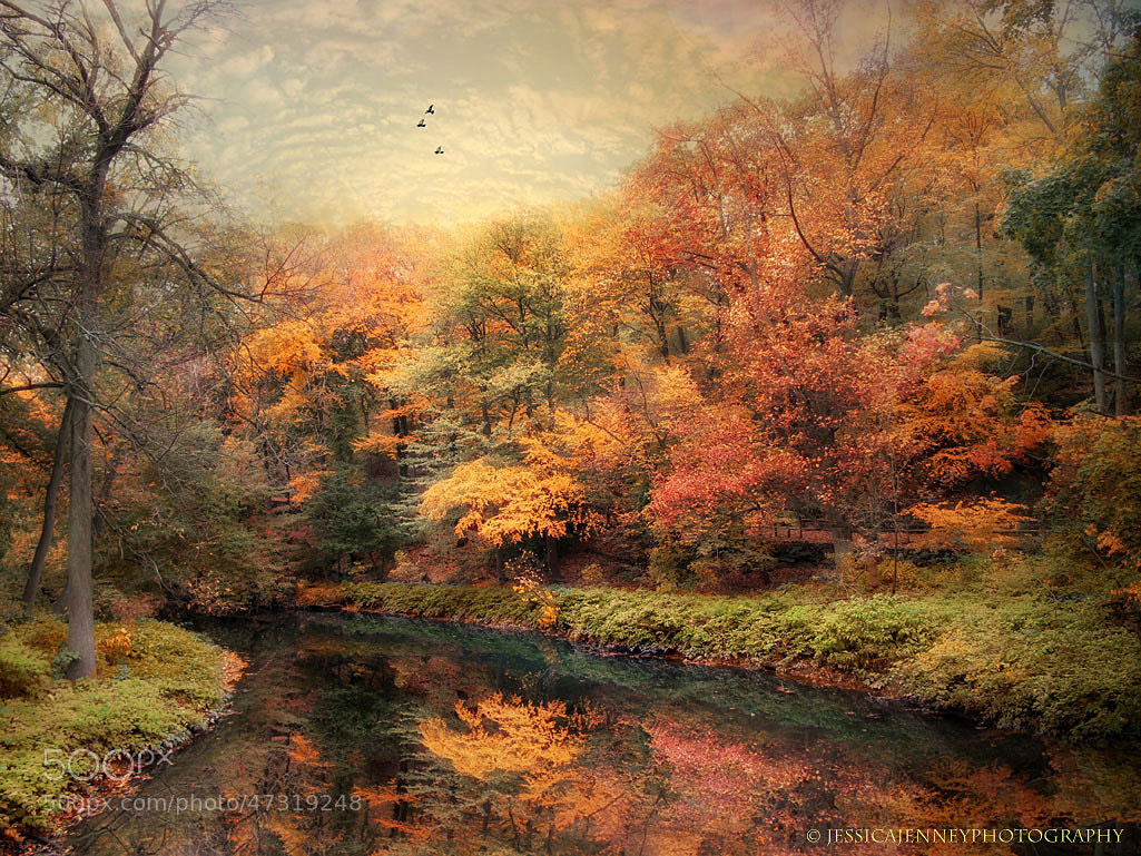 Photograph Reflections of October by Jessica Jenney on 500px