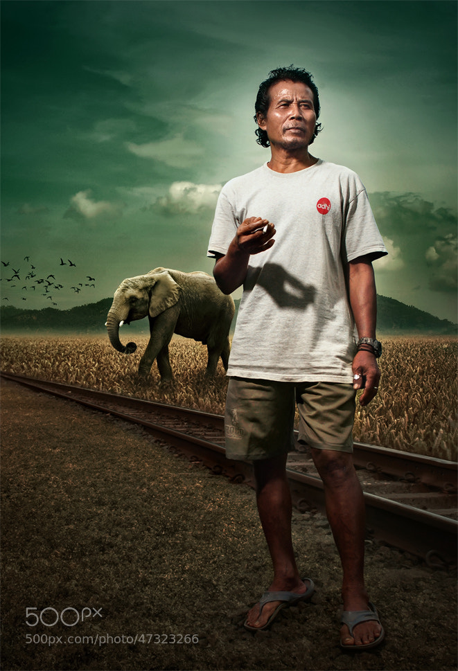 Photograph Elephant handler by sony tagor on 500px