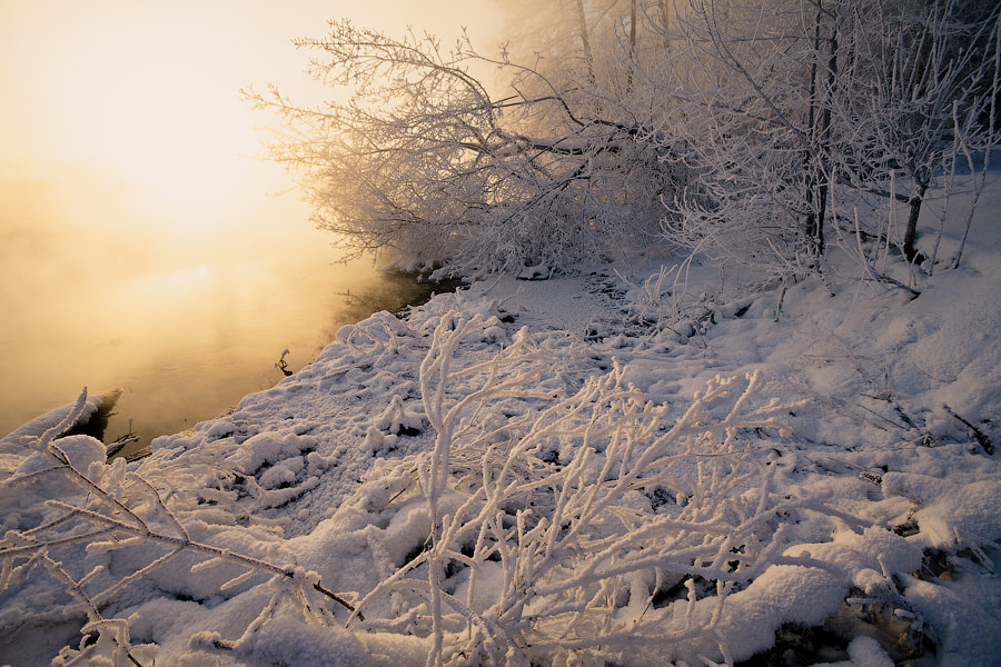 Photograph Winter dream of the river by George Malets on 500px