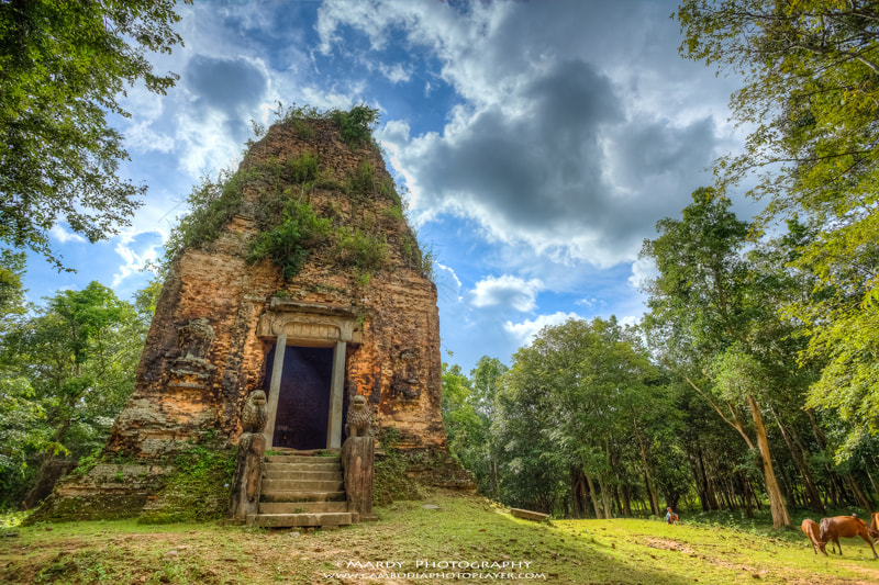 Photograph Lion Temple! by Mardy Suong Photography on 500px