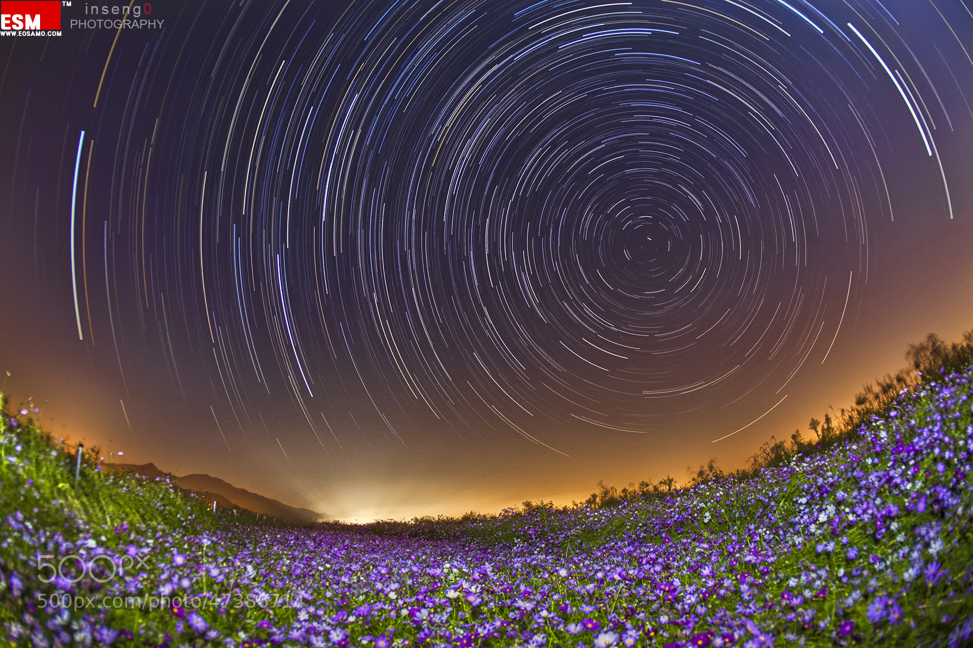 Photograph Startrails with cosmos by chan-wook Kim on 500px