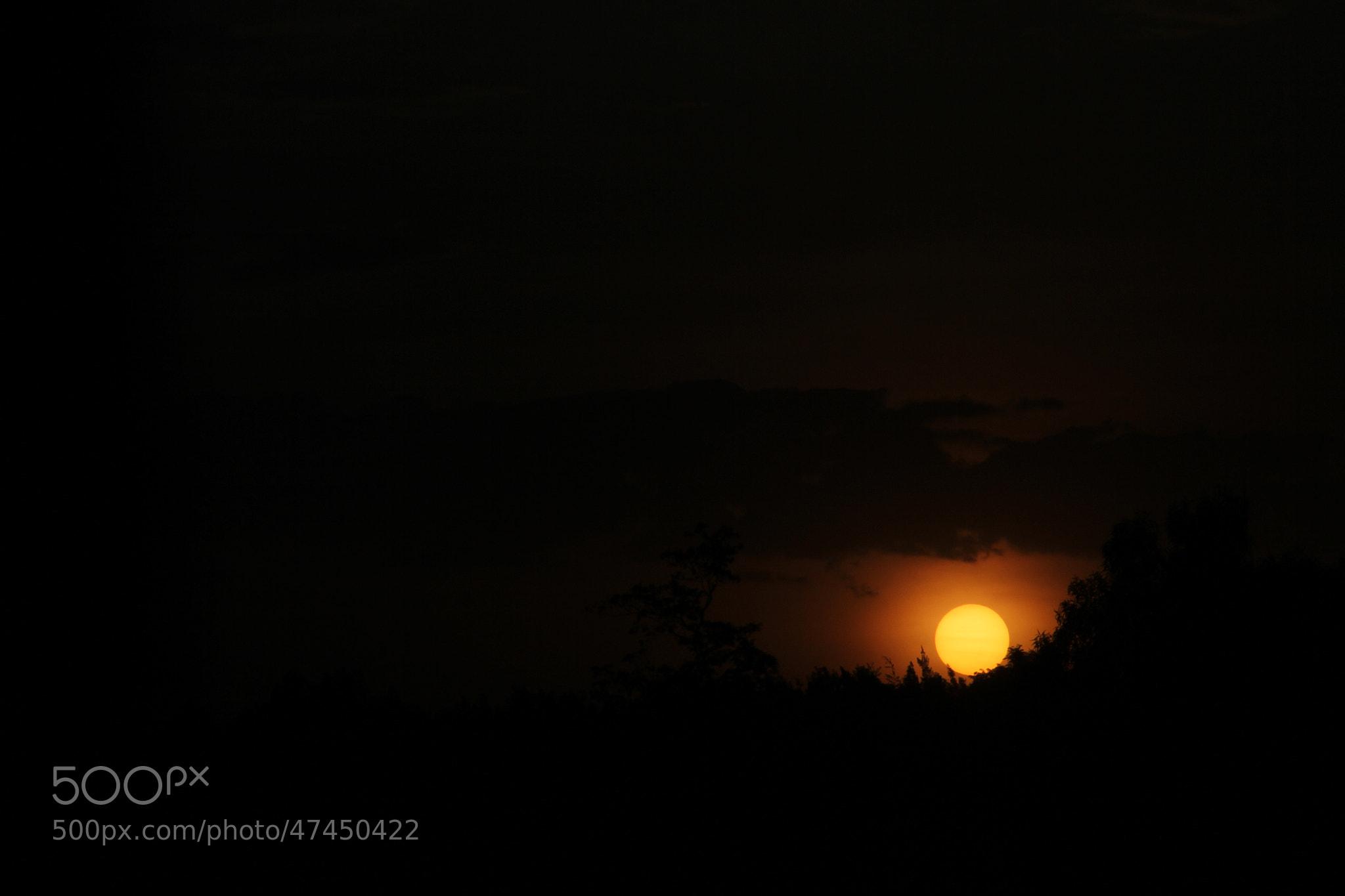 Photograph sunny side by wambuikisienya on 500px