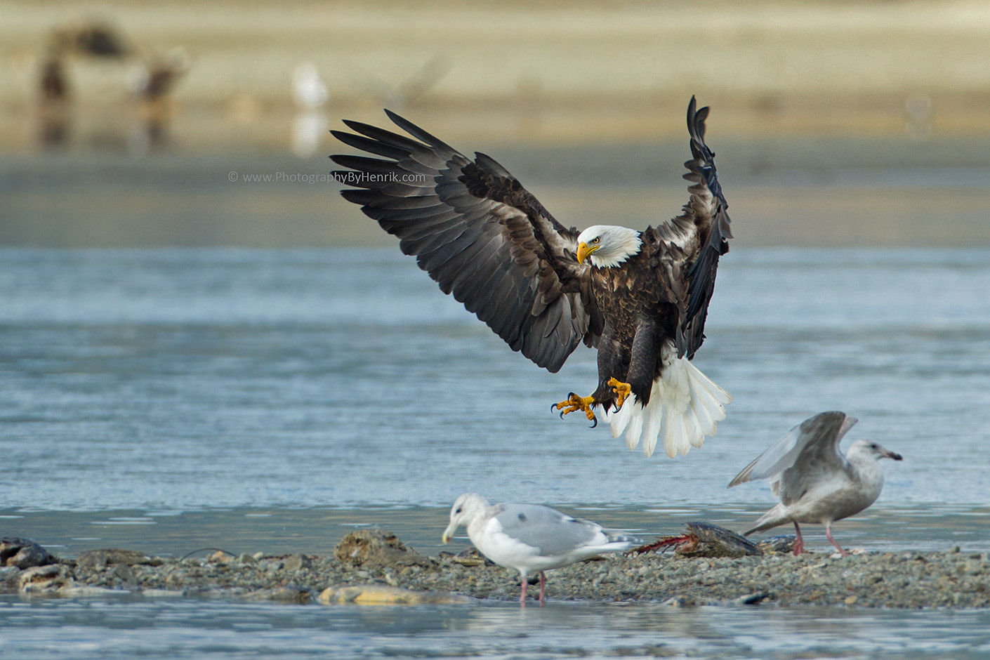 Photograph Taking Ownership by Henrik Nilsson on 500px