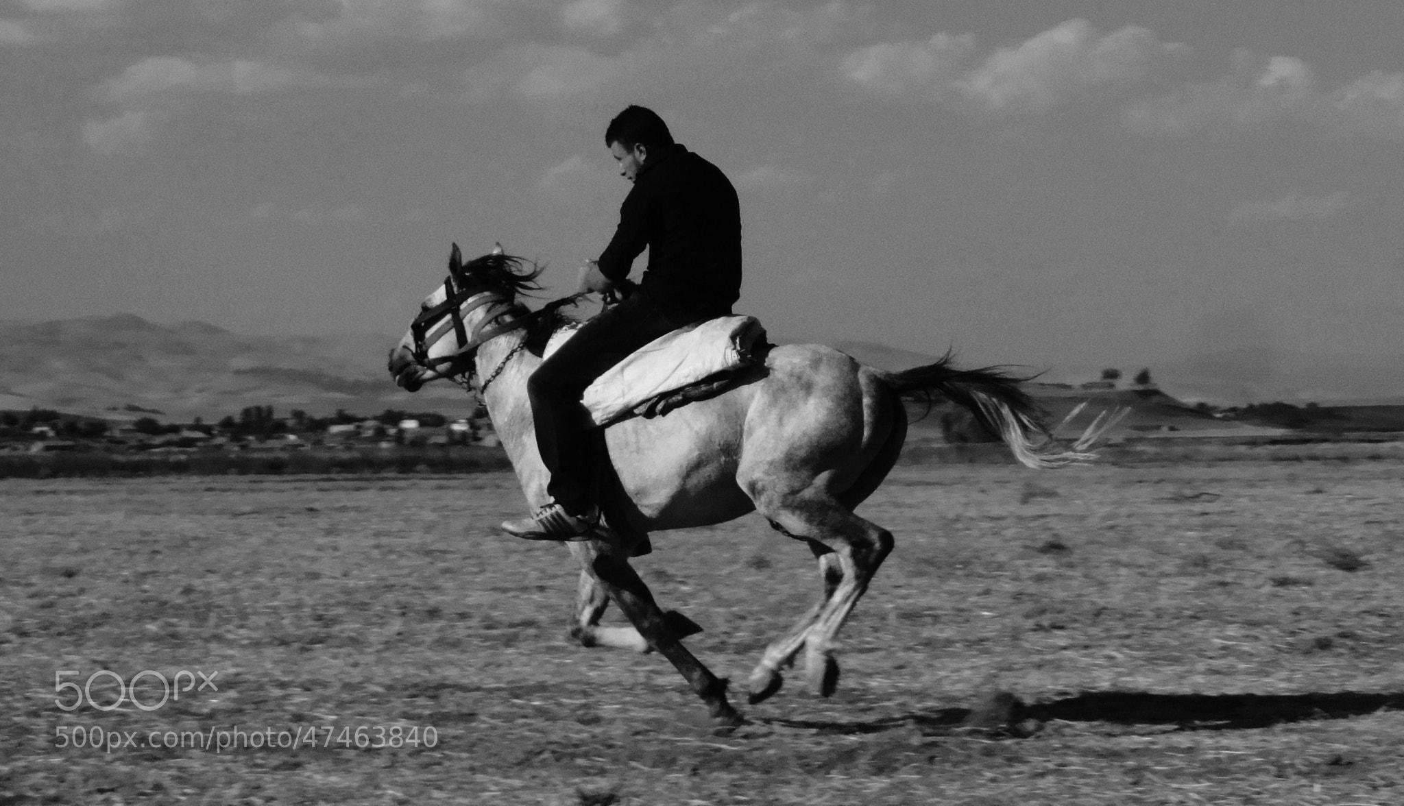 Photograph Riding Horse by Cihan Koç on 500px