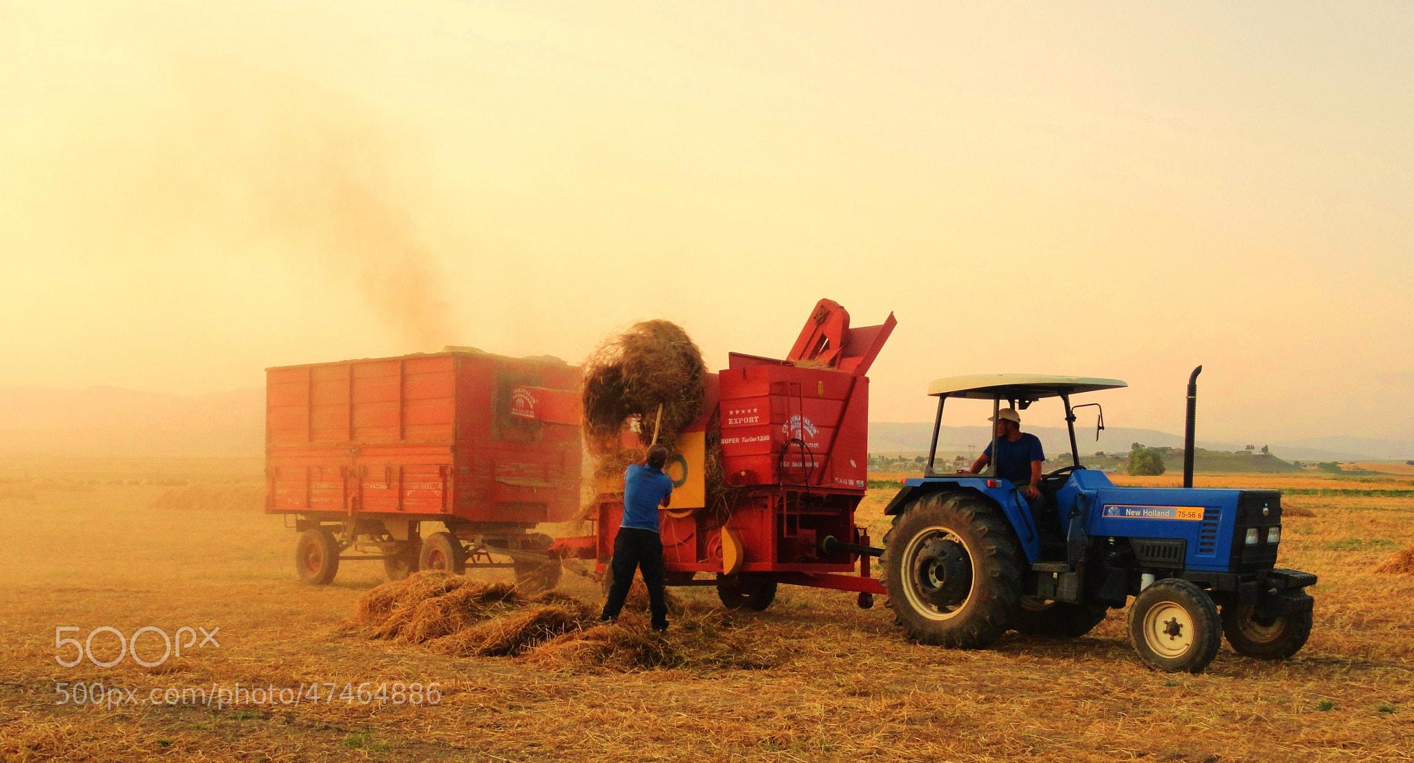 Photograph Harvest by Cihan Koç on 500px