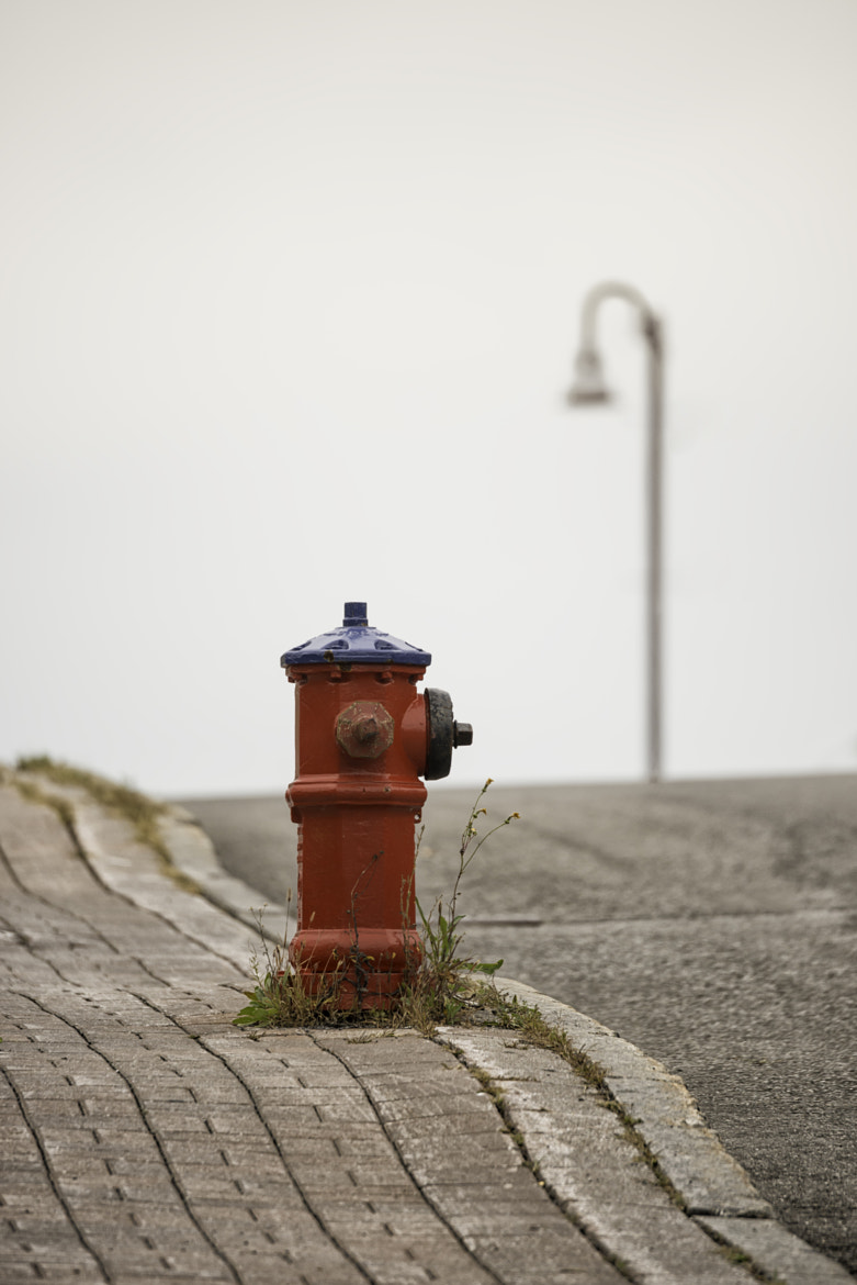 Photograph The Hydrant by Daniel Parent on 500px