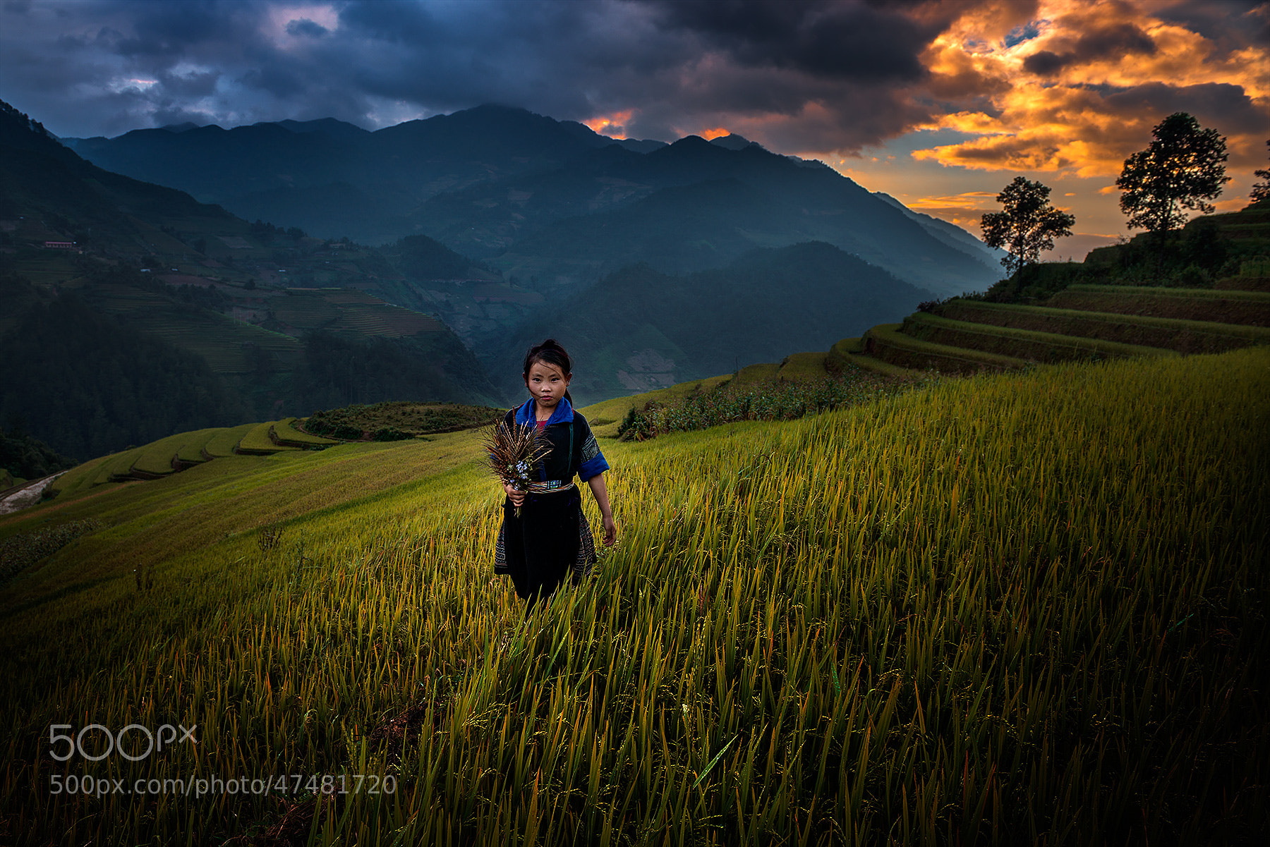 Photograph People in Mu Cang Chai by Ratnakorn Piyasirisorost on 500px