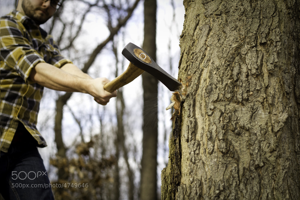 Photograph Lumberjacking by Phil Armstrong on 500px