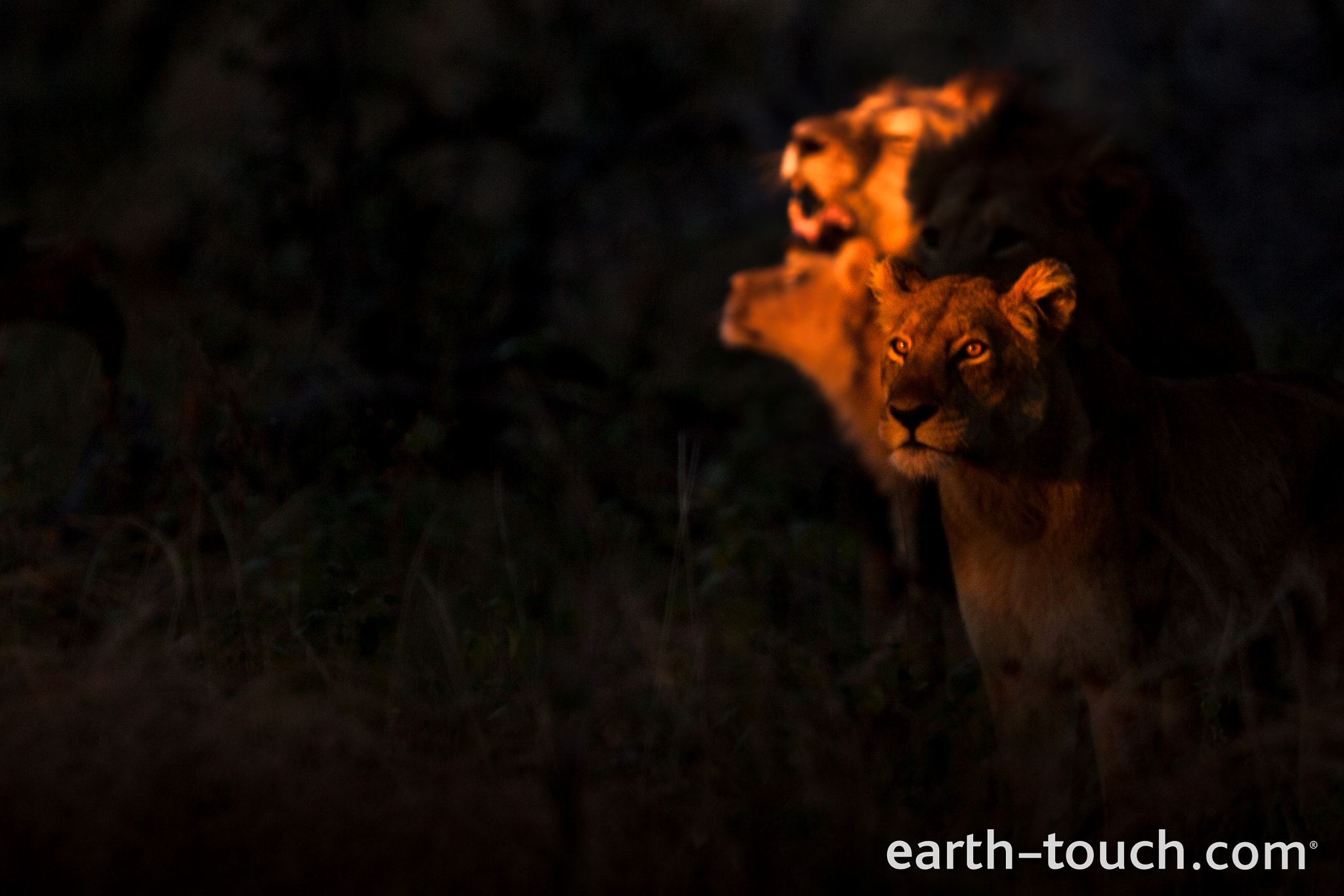 Photograph A Moment Of Illumination by Earth Touch on 500px