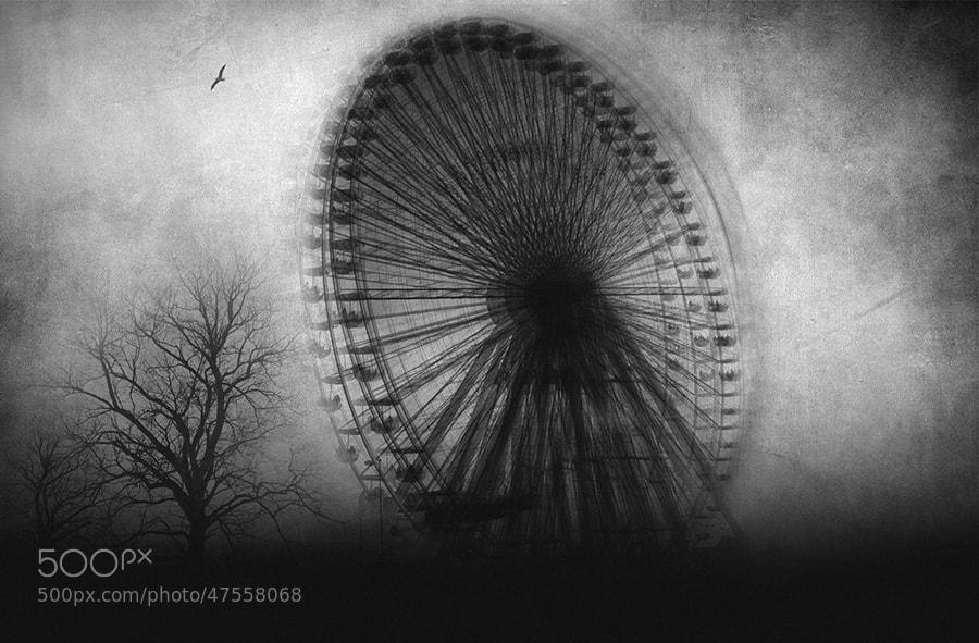 Photograph Vertigo by Taylan Soytürk on 500px