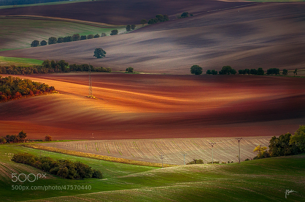Photograph Moravian fields by Janek Sedlar on 500px