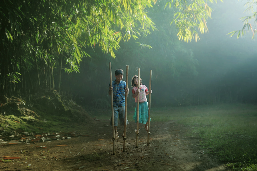 Photograph bamboo play by asit  on 500px