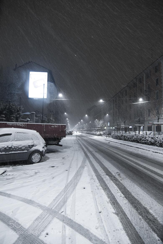 Photograph Snowy evening by Riccardo Bertani on 500px
