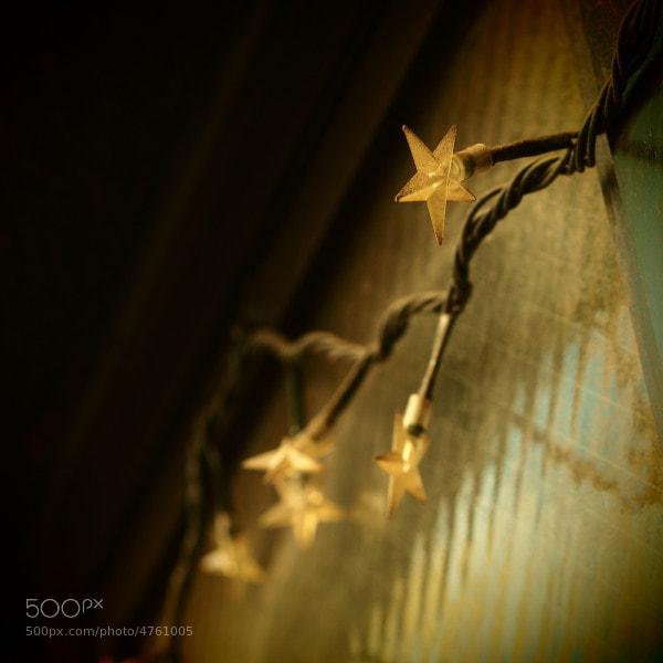 Photograph Stellar by Mariko Hino on 500px