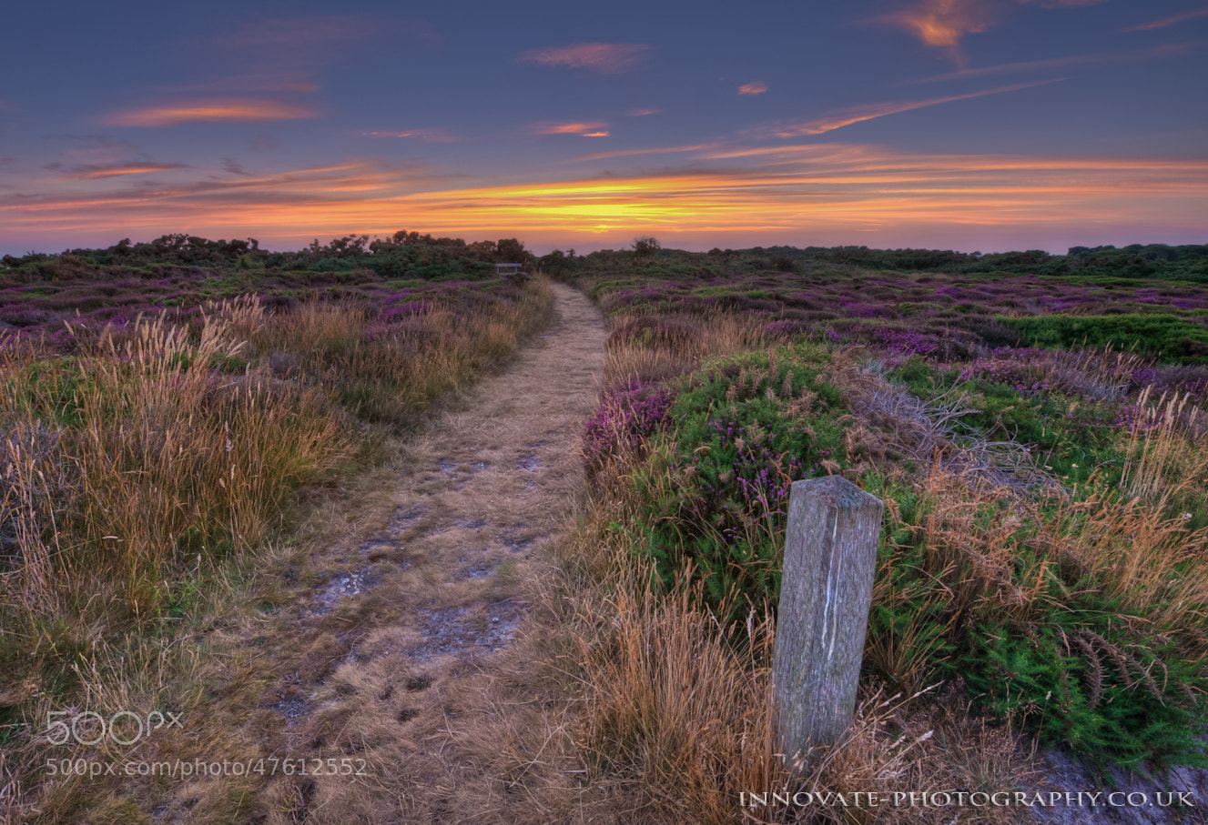 Photograph PATHWAY TO THE SUN.... by Paul Wright on 500px