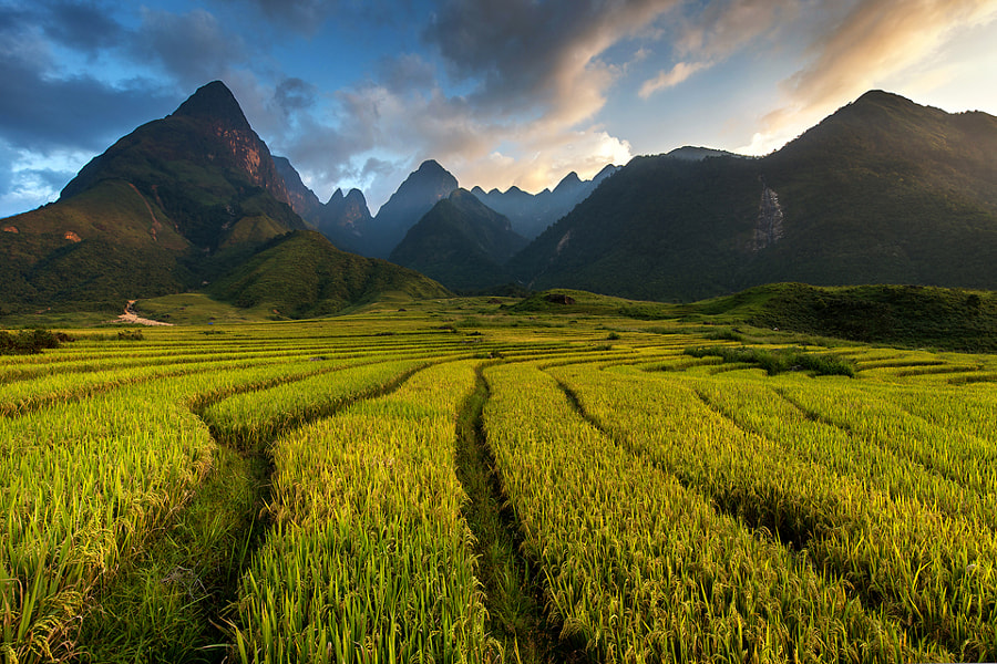 Mt Fansipan .....3143m. Vietnam by Sarawut Intarob on 500px.com