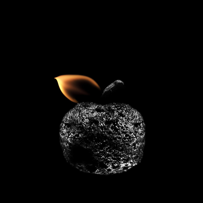 Photograph Яблоко / Apple by PolTergejst  on 500px