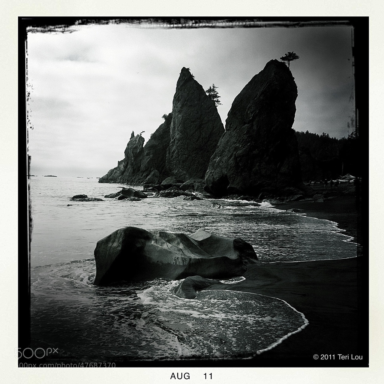 Photograph Washington Coast by Teri Dantzler on 500px