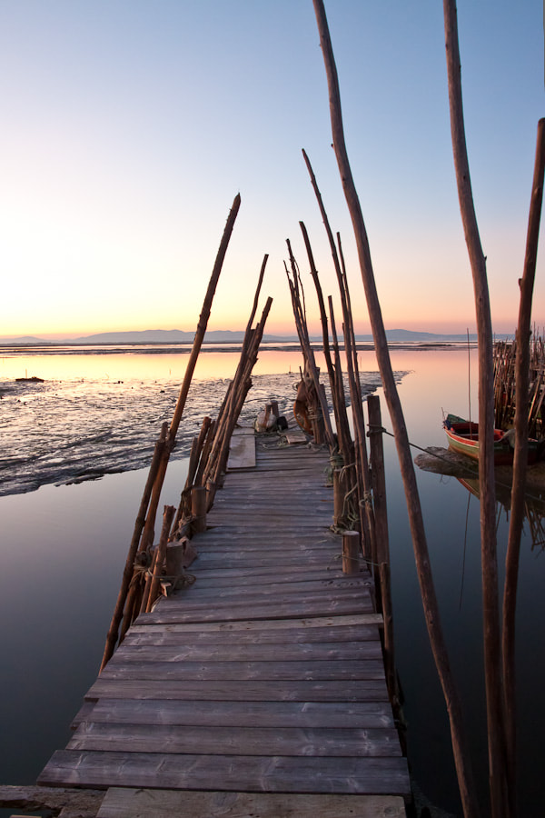 Photograph Carrasqueira by Marco Gaspar on 500px