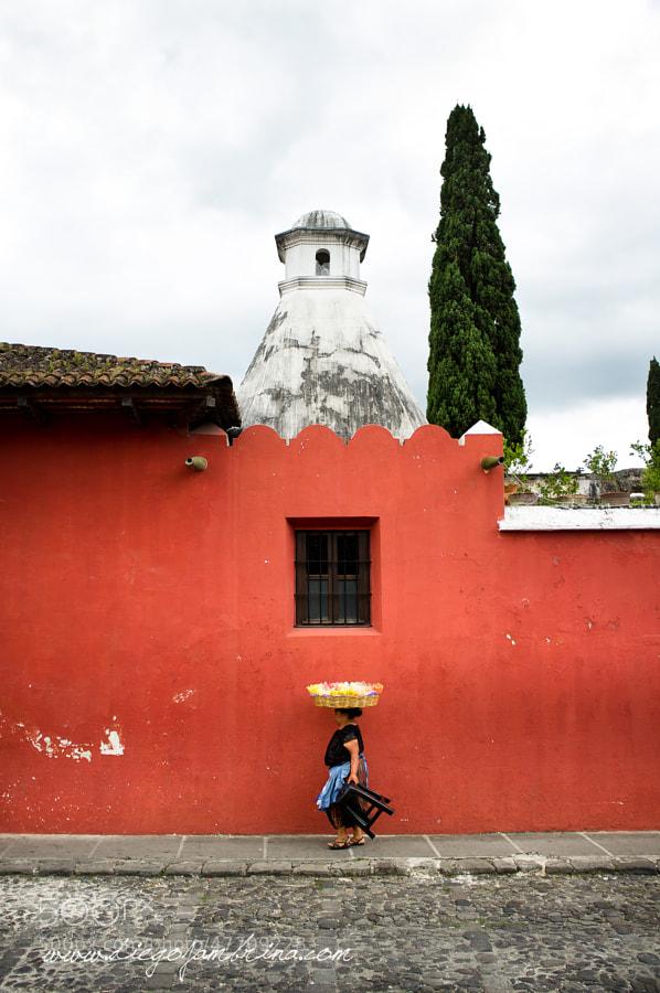 La frutera callejera by Diego Jambrina on 500px.com