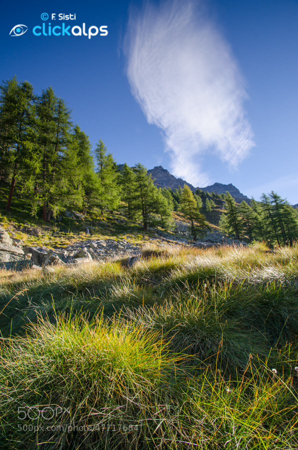 Photograph Un nuage de l'automne... (Valle dell'Orco, Parco Nazionale Gran Paradiso, Piemonte) by Francesco Sisti on 500px