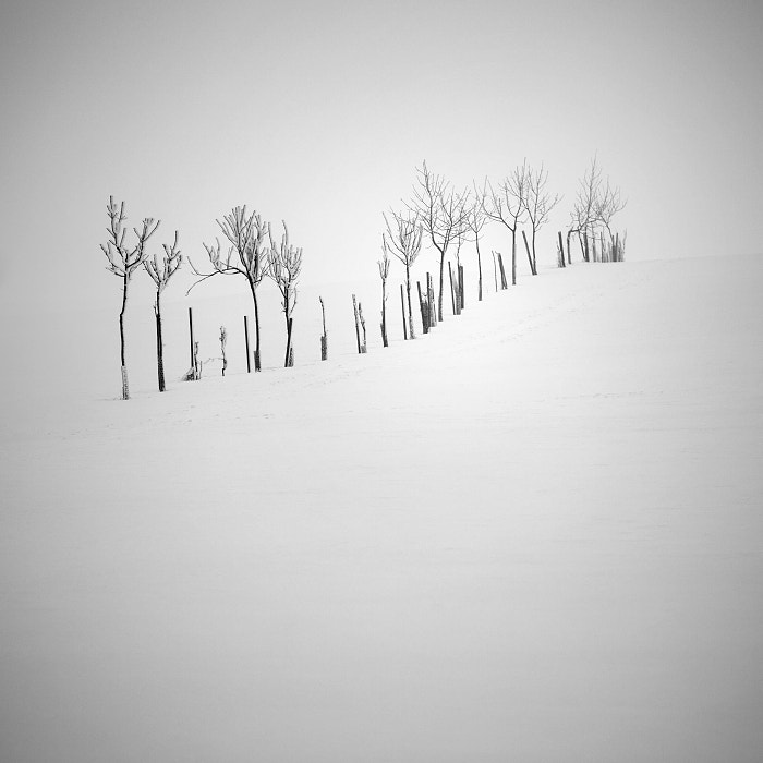 Photograph Winter in the Ore mountains VIII by Daniel Řeřicha on 500px