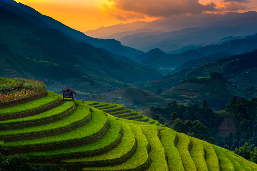 Sunset @ Mu Cang Chai by Ratnakorn Piyasirisorost on 500px.com