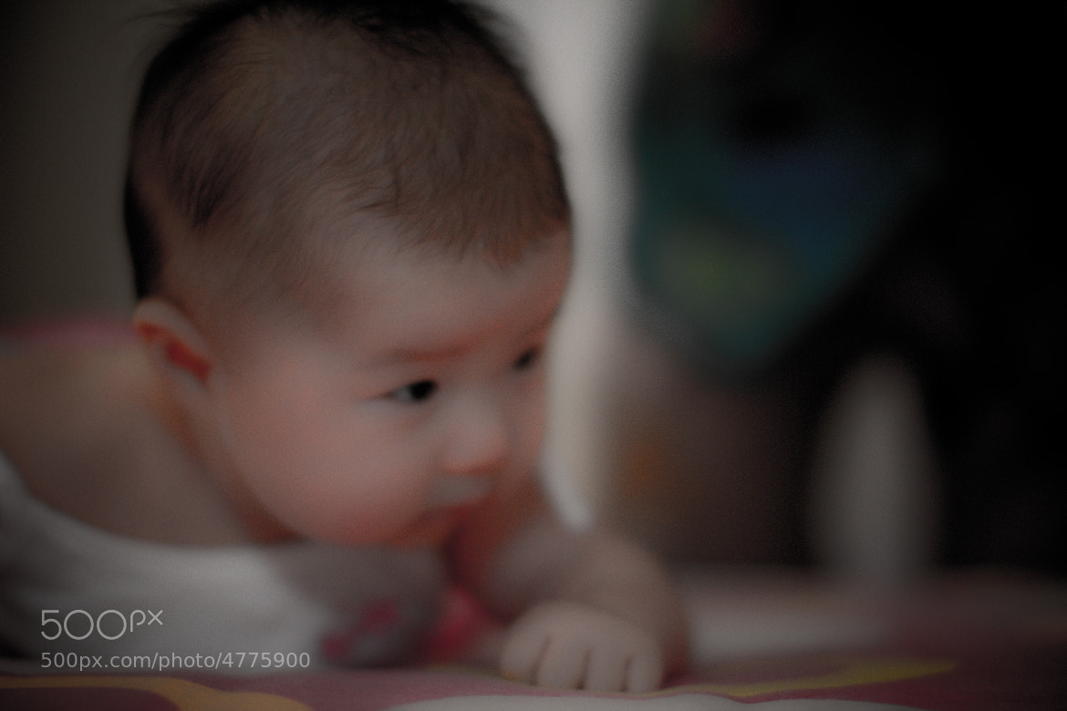 Photograph ::: Intolerably Cute ::: (Kim 1) by Hakeem Razik on 500px