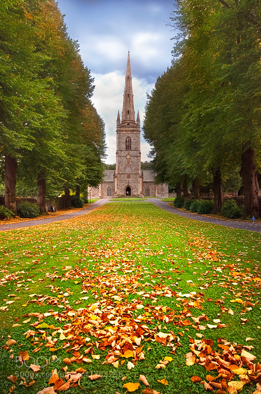 Photograph Autumn Alley by Lukasz Maksymiuk on 500px