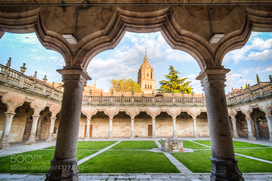 Photograph Patio de Escuelas by Jose Agudo on 500px