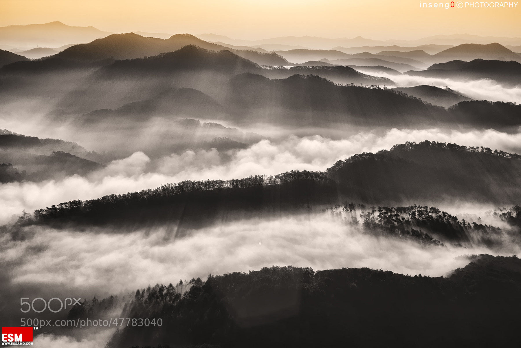 Photograph sunlight of Morning by chan-wook Kim on 500px