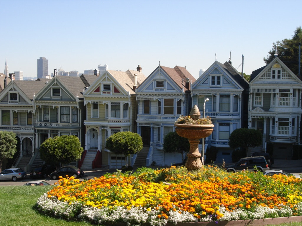 Photograph The Painted Ladies by Jo Ric on 500px