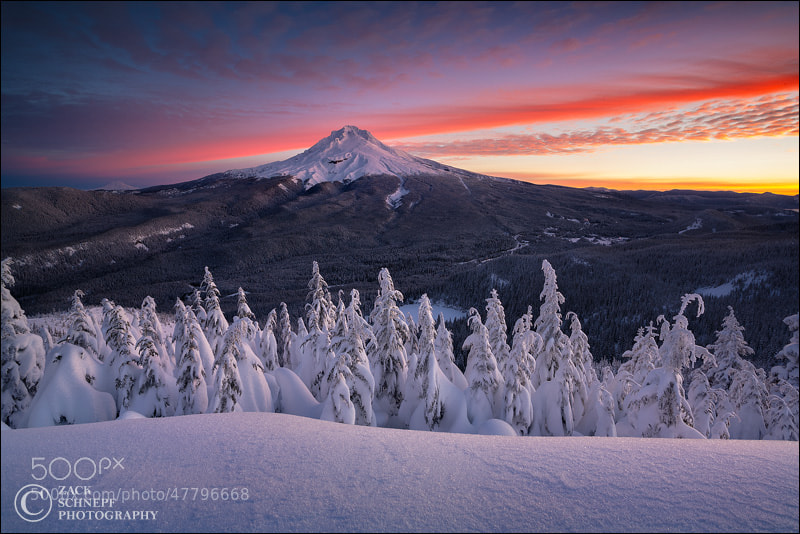 Photograph Mount Hood Sunrise by Zack Schnepf on 500px