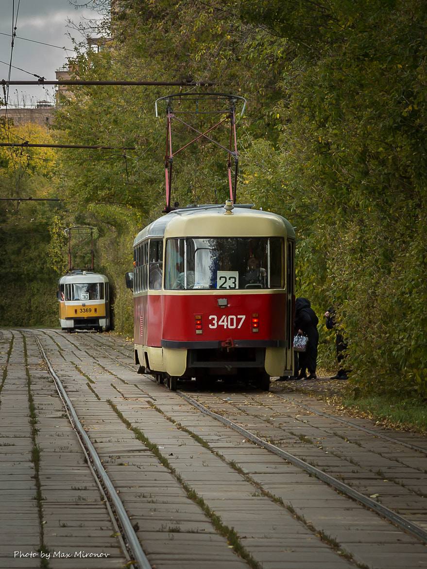 Photograph The tram in the park by Maxim Mironov on 500px