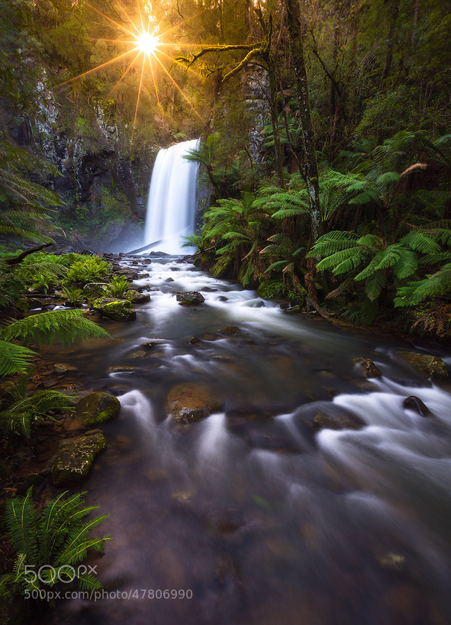 Photograph Ray Of Hope II by Dylan Gehlken on 500px