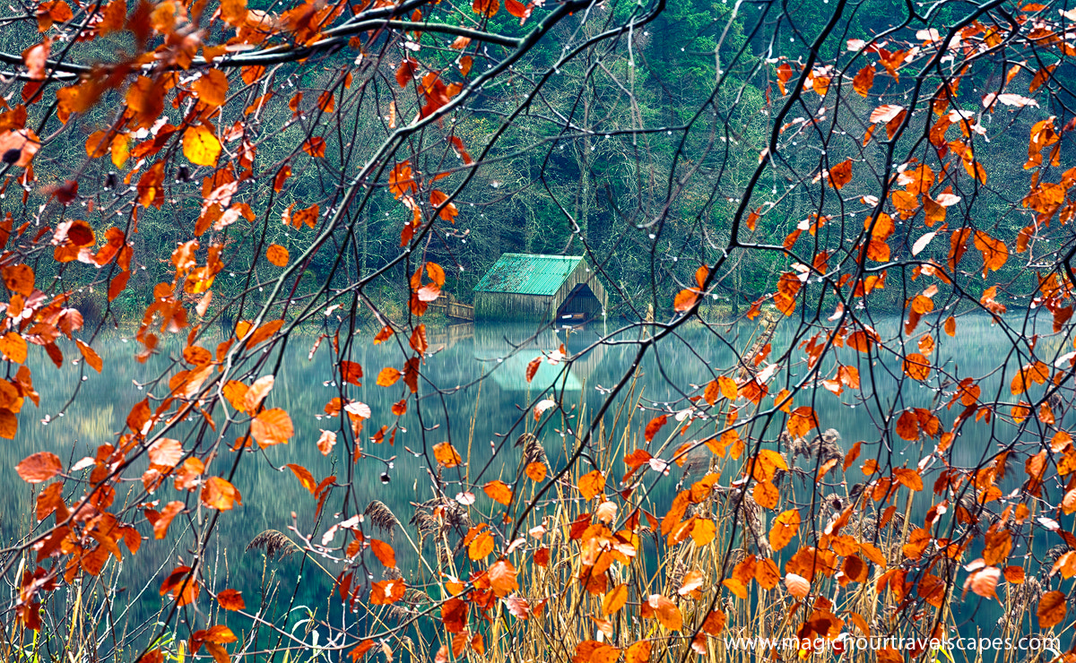 Photograph Autumn's Veil by Kah Kit Yoong on 500px