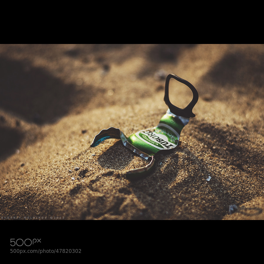 Photograph Scorpion))) by Evgeniy Melnikov on 500px