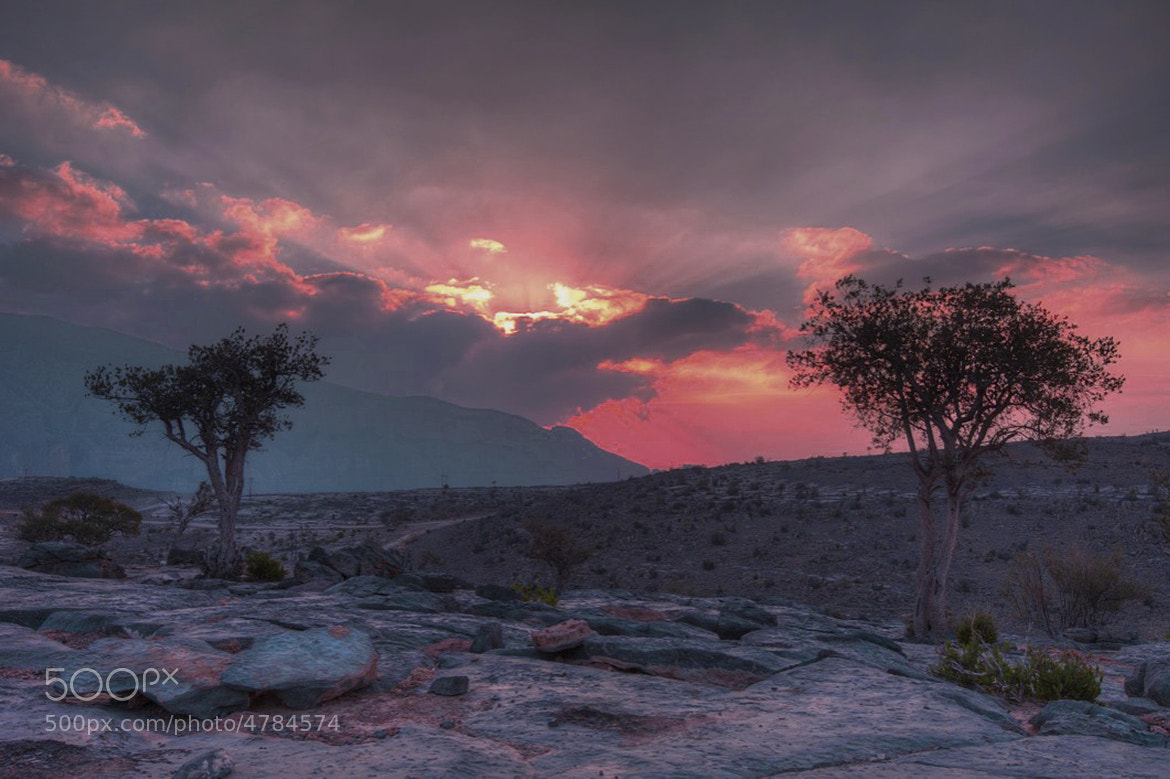 Photograph Jabal Shams / Oman by Abdalla Al Qasmi on 500px
