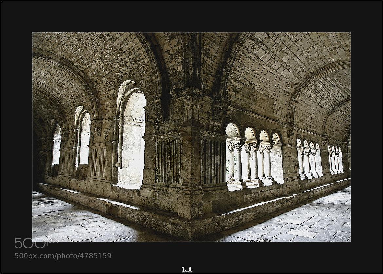 Photograph Abbaye de Montmajour by Loïc Auffray on 500px