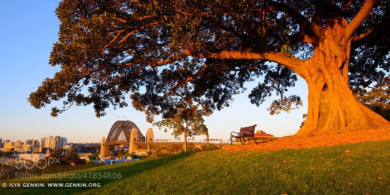 Photograph Observatory Hill by Ilya Genkin on 500px