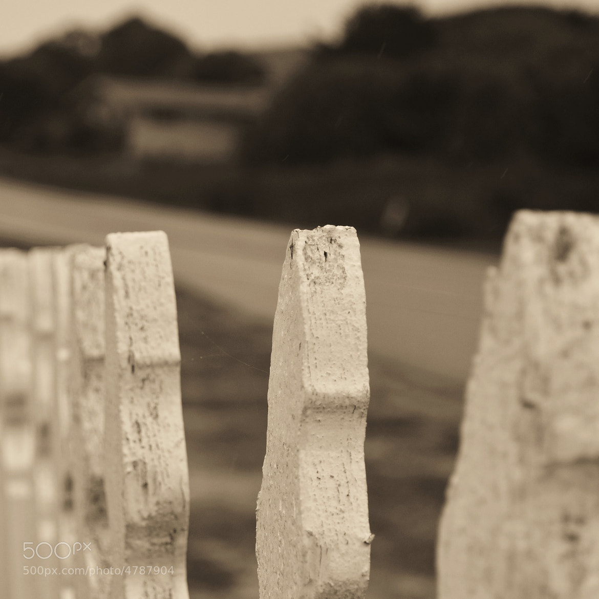 Photograph Fenceline by Jason Tudbury on 500px
