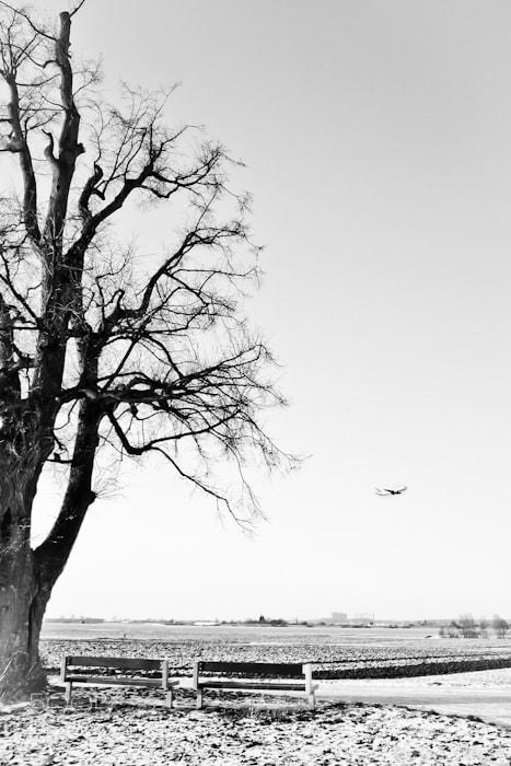 Photograph holidays... by Markus U on 500px