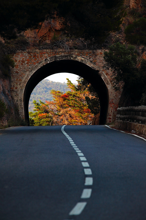 Photograph Road by Sam Dobson on 500px