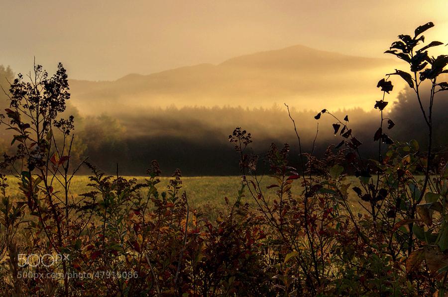 Photograph Adirondacks mist by Vikas Garg on 500px