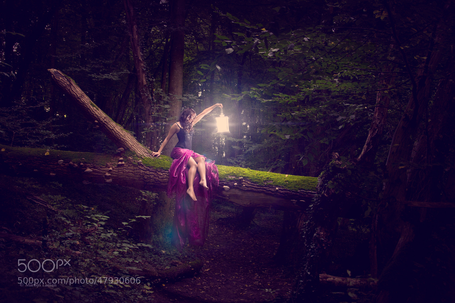 Photograph Forest Fairy by Martijn Laman on 500px