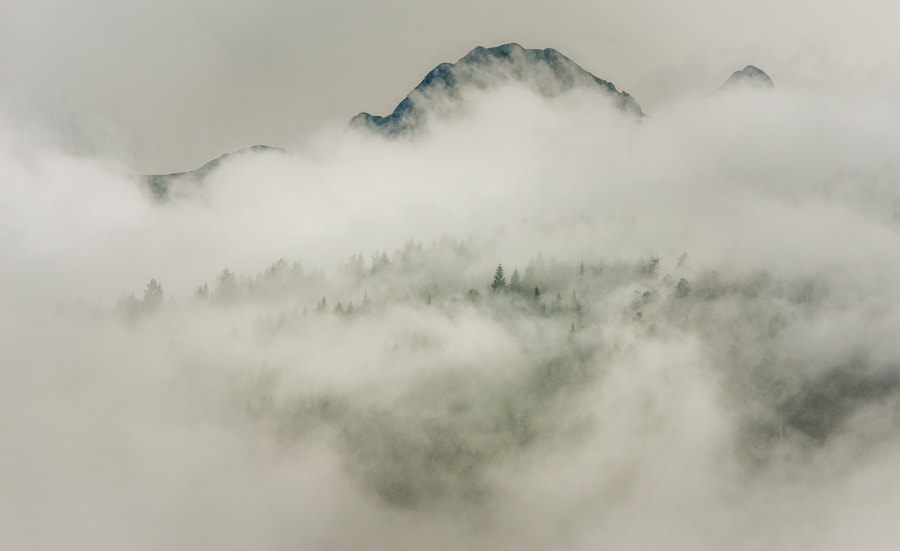 This photo was shot in the French Pyrenees at Fourc south of Foix.