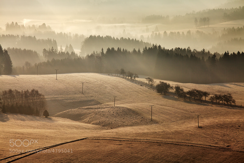 Photograph Spring Morning by Martin Rak on 500px