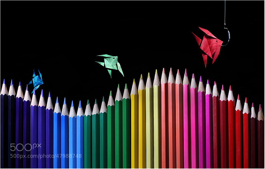 RGB fishing an improved version by Victoria Ivanova on 500px.com