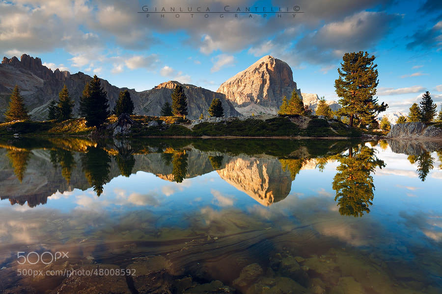 Photograph Timeless by Gianluca Cantelli on 500px