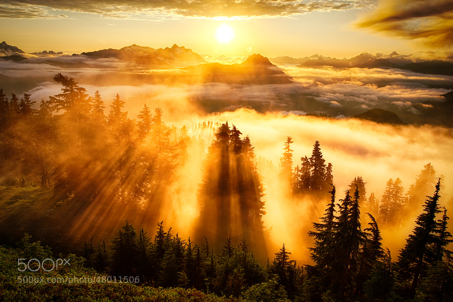 Photograph Golden Hour at its Finest by Michael Matti on 500px